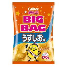 ポテトチップス ビッグバッグ うすしお味 袋170g
